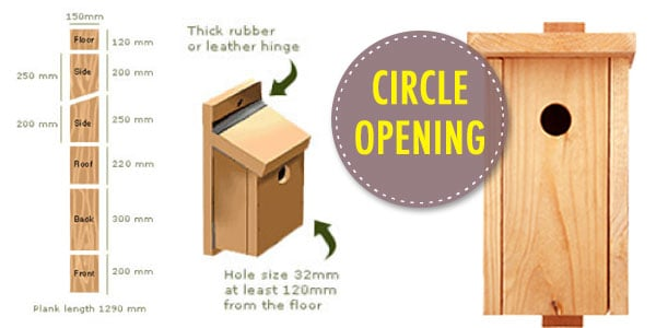 Nest Box1 Ultimate Guide to Nest Boxes: Why You Should Have Them, and How to Build Your Own