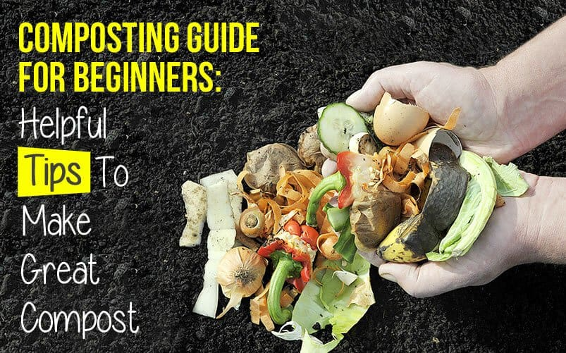 Composting-Guide-for-Beginners