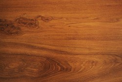 shutterstock 12048355 e1461680615566 Wood Basics: Exploring the Different Types, Uses, and Best Care for Wooden Materials