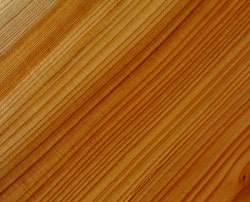 shutterstock 369108566 e1461682253919 Wood Basics: Exploring the Different Types, Uses, and Best Care for Wooden Materials