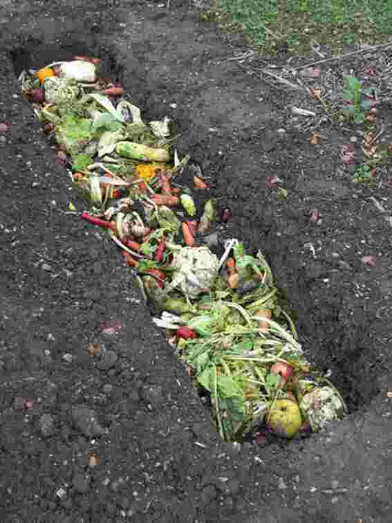 trench bin Composting Guide for Beginners: Helpful Tips To Make Great Compost