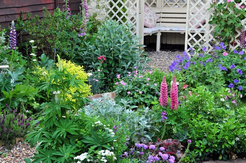 cottage garden GARDENING: A Comprehensive Guide From Planning to Harvesting, and More