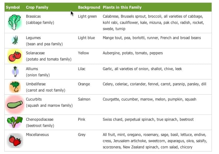 crop families GARDENING: A Comprehensive Guide From Planning to Harvesting, and More