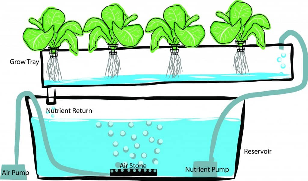 hydroponics GARDENING: A Comprehensive Guide From Planning to Harvesting, and More