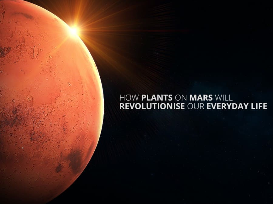 Mars_Plant