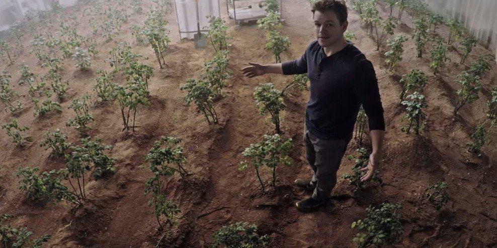 matt damon mars benefits of planting How Plants on Mars will Revolutionise Our Everyday Life