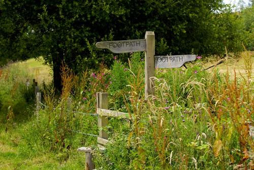 garden-byways-for-wildlife