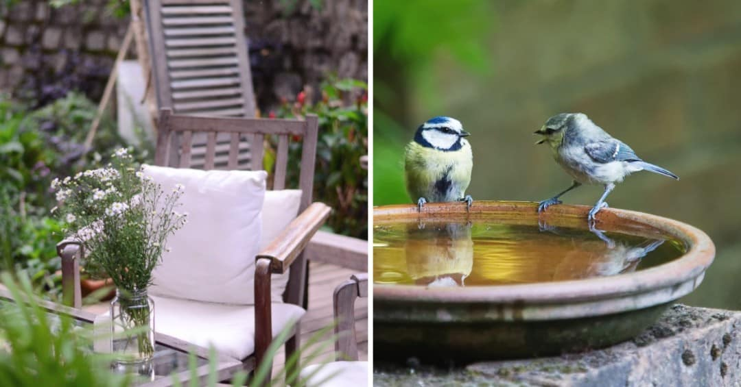 Money in the Garden: 5 Outdoor Features That Could Value to Your Home
