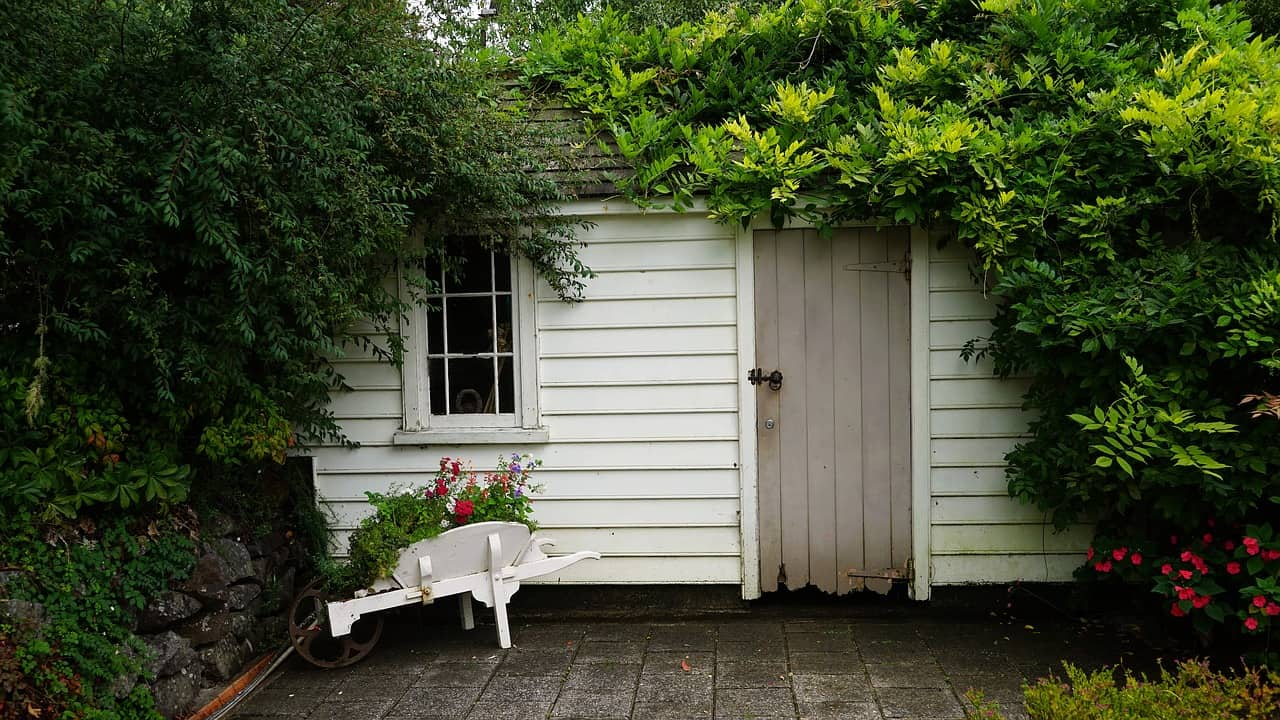 create-garden-wildlife-shed-3-pick-the-right-plants
