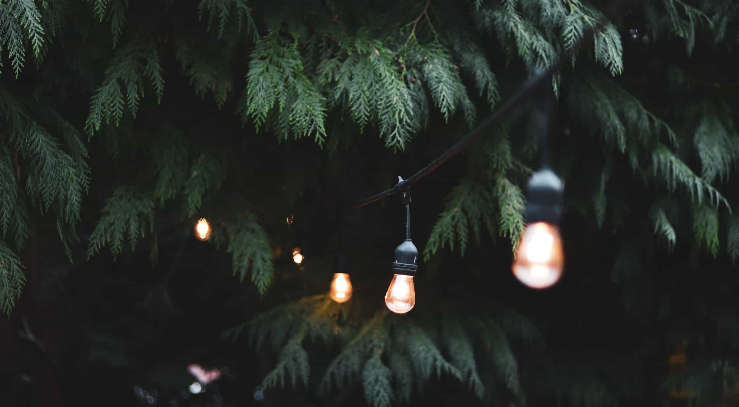 make-the-most-of-a-small-garden-8-lighting