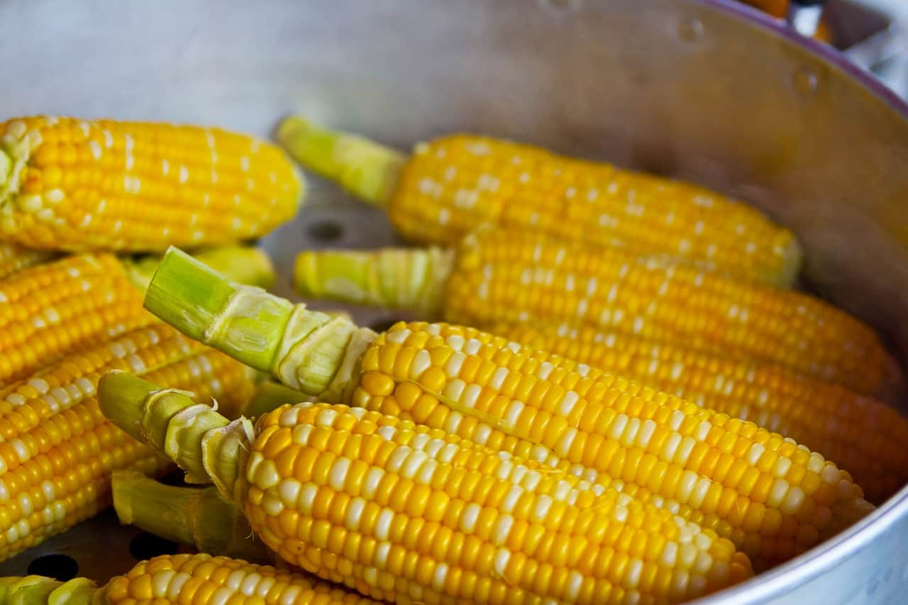 seven-homemade-weed-killers-6-cornmeal