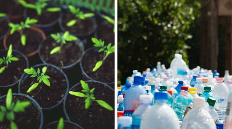 12-genius-gardening-hacks-02-micro-greenhouse