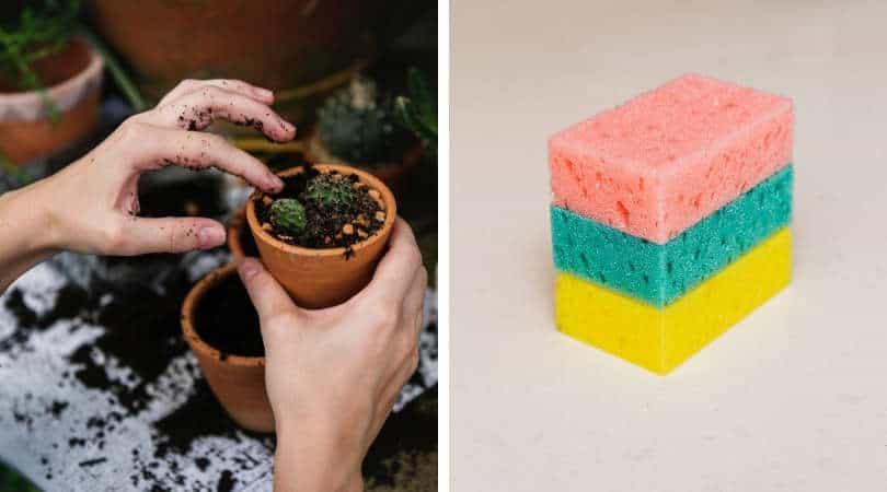 12-genius-gardening-hacks-03-sponge