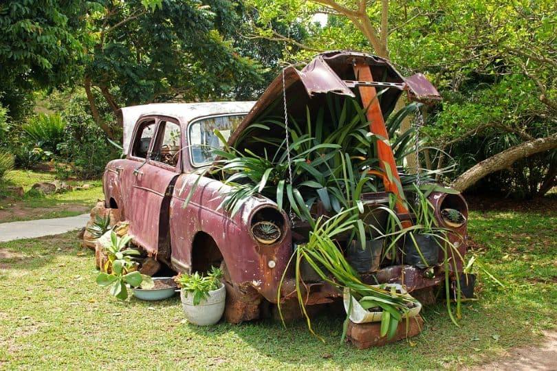 low-budget-garden-ideas-5-diy-everything-first