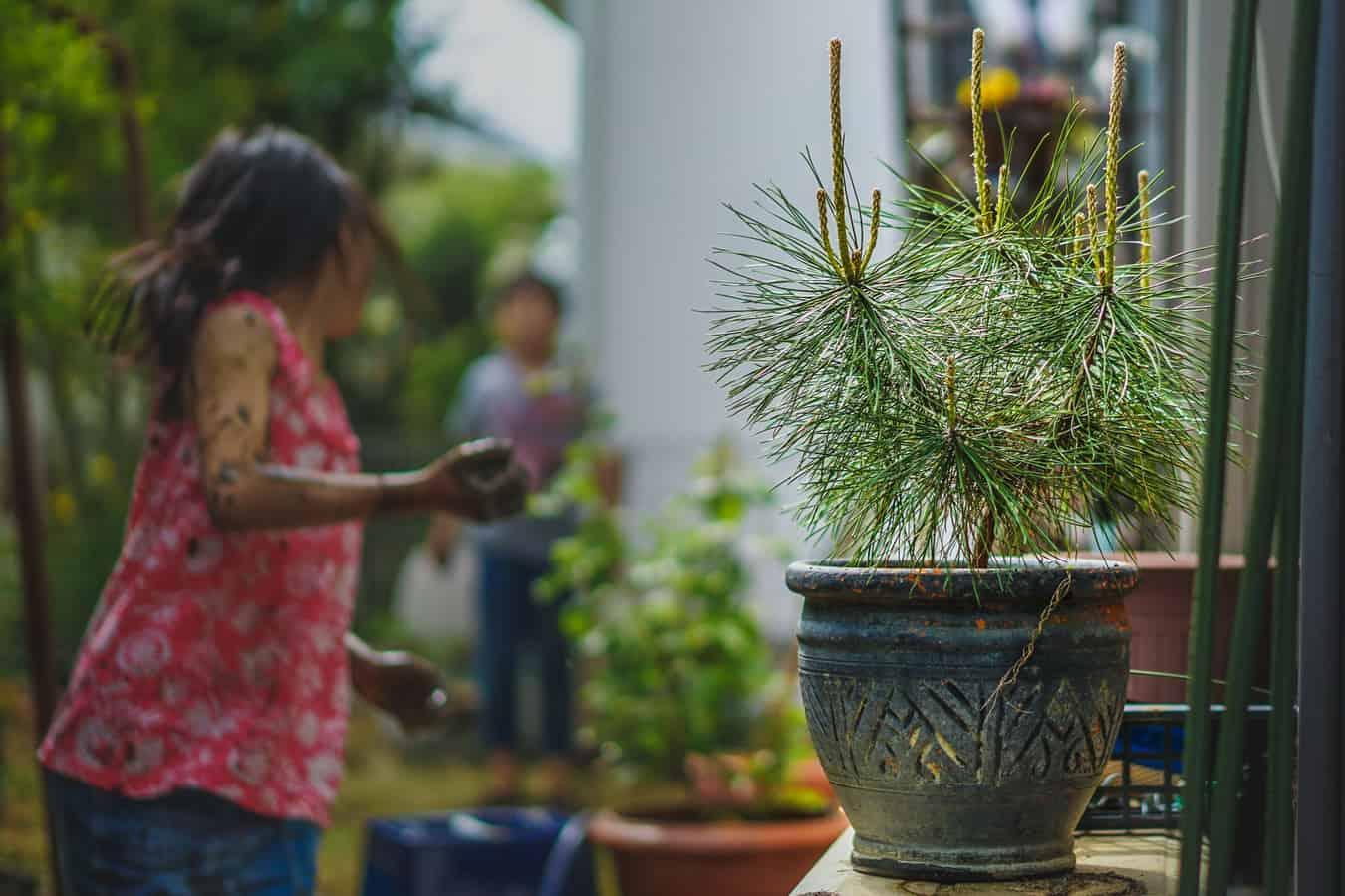 best-garden-activities-for-kids-6-digging