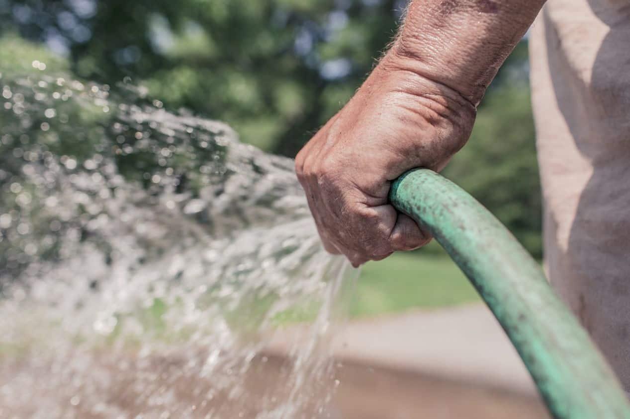 worms-in-the-garden-3-water-soil