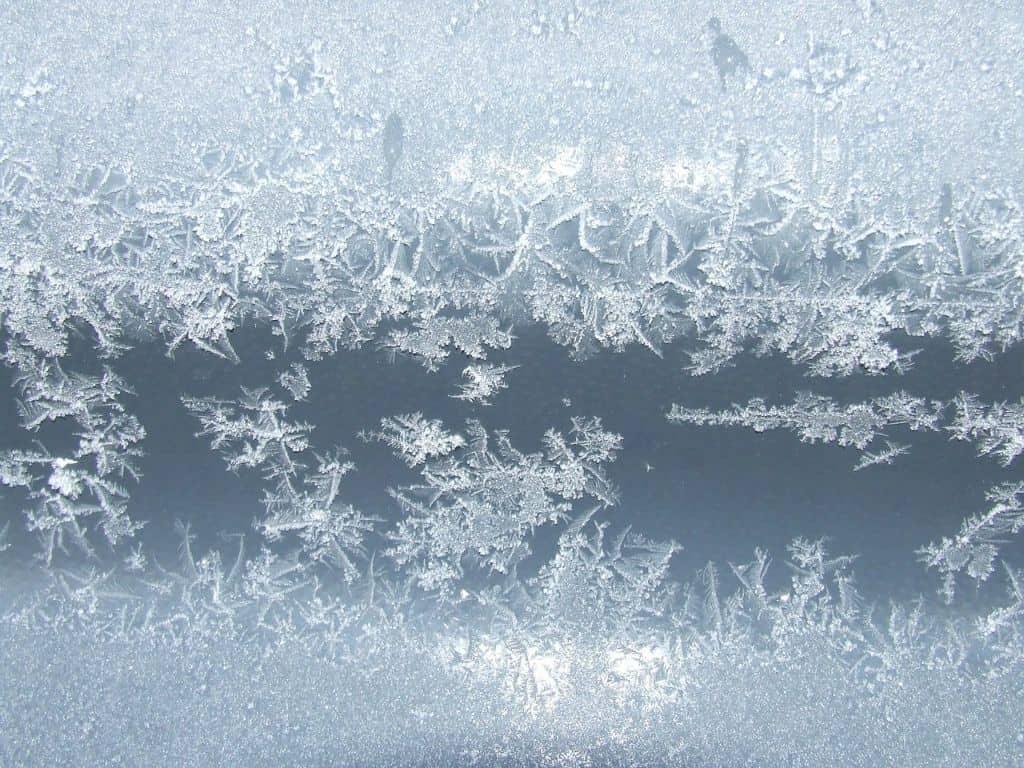 garden-pond-maintenance-4-frost