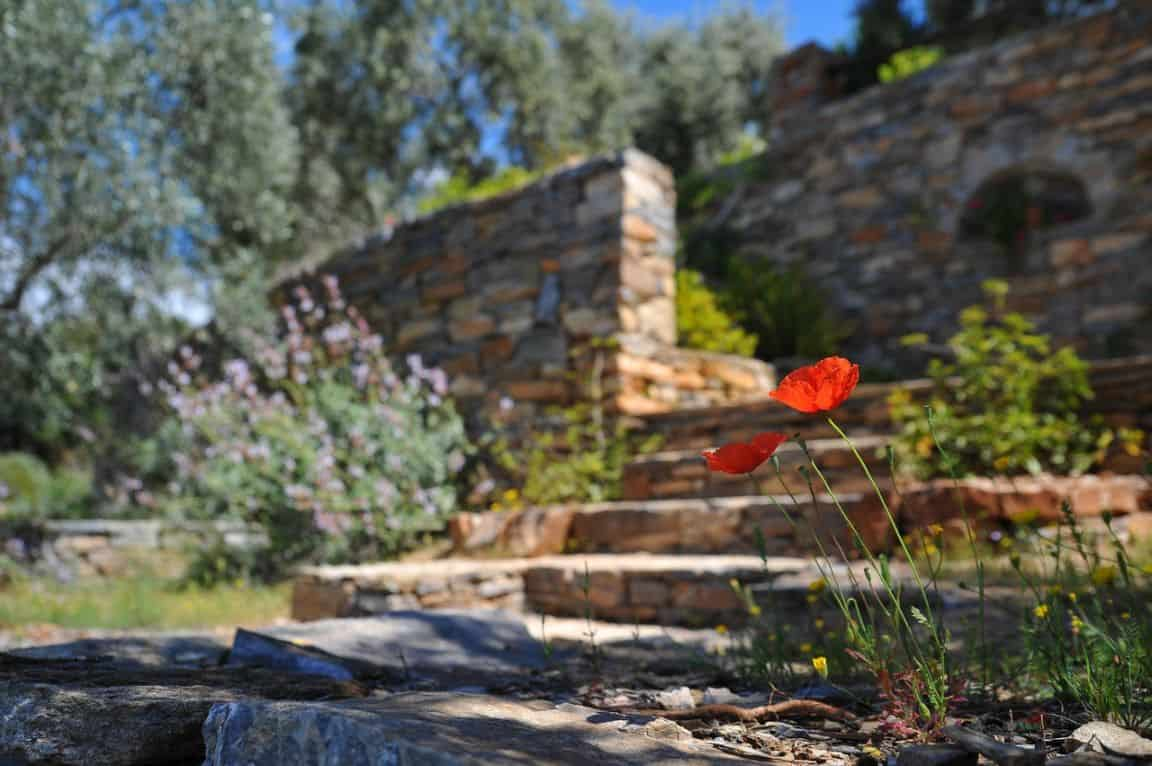 sloping-garden-ideas-5-foundations-