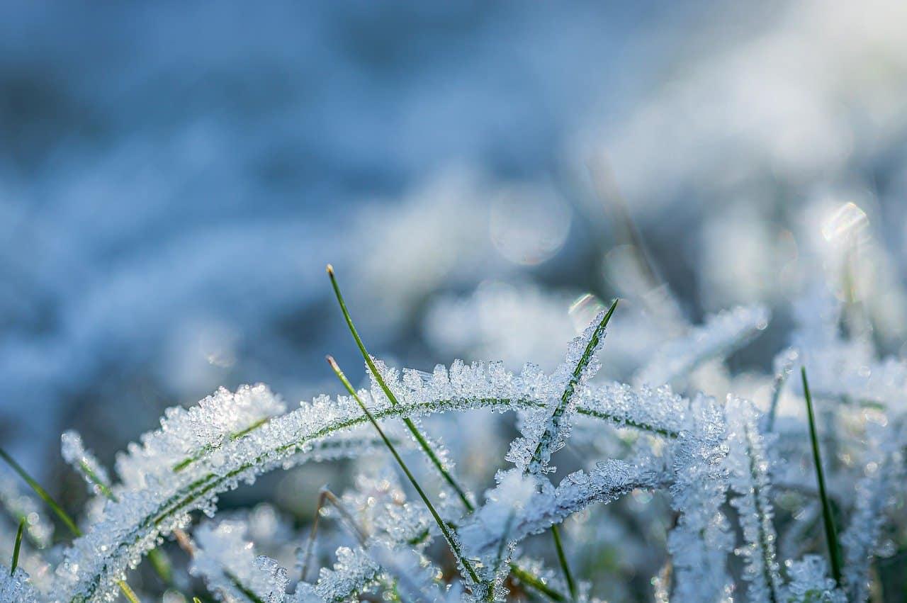 winter-lawn-care-tips-2-use-salt-alternatives-pixabay