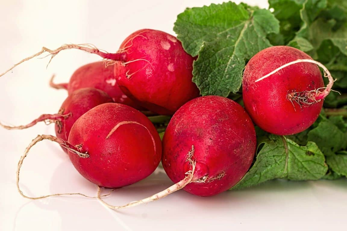 fast-growing-vegetables-2-radish-pixabay