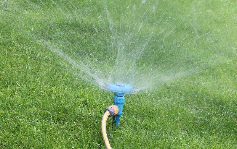 lockdown-basic-gardening-chores-2-lawn-maintenance-reseed-pixabay