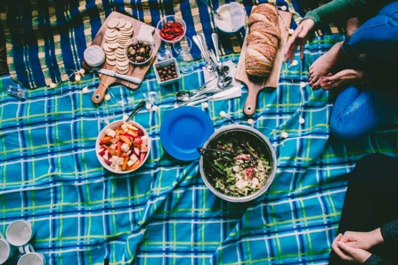 outdoor-activities-for-family-during-quarantine-1-picnic-in-the-garden-unsplash.jfif