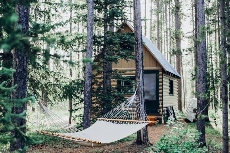 log cabin in the woods with large hammock hanging from trees out front
