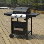 BillyOh Garden Grill 2 Burner Hooded Gas BBQ - with Hose & Regulator
